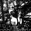 Mendocino Wedding: Five Reasons to Get Married at the MacCallum House