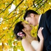 Autumn Theme Wedding Ideas