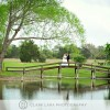 Texas Wedding Venues: Las Brisas Farm Provides Rustic Setting for Intimate Weddings