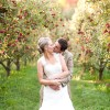 Apple Orchard Wedding Ideas