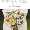 Join the Intimate Weddings Editorial Team
