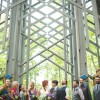 Lenzi and Chris' Thorncrown Chapel Destination Wedding