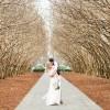 Anna and Awad's $3,000 DIY Dallas Arboretum Wedding