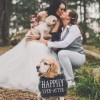 Pooch Power: How to Include Your Dog in Your Wedding