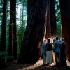 Real Weddings: Rachel and Sky's California Forest Wedding