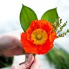 DIY Boutonnieres: Poppin' Poppies!