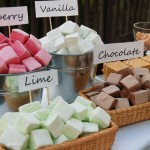 Gourmet S'mores Station for a Rustic Wedding