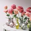 Coloured Vases and Bottles from Luna Bazaar