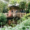 Ontario Wedding Venues: Cambridge Butterfly Conservatory