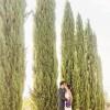 Jared and Sarah's 12th Century Tuscan Church Wedding