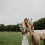 Farm Styled Shoot with Llamas