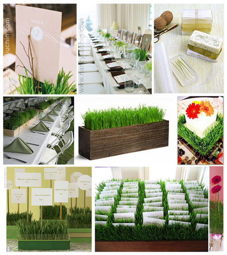 DIY centerpieces with wheatgrass