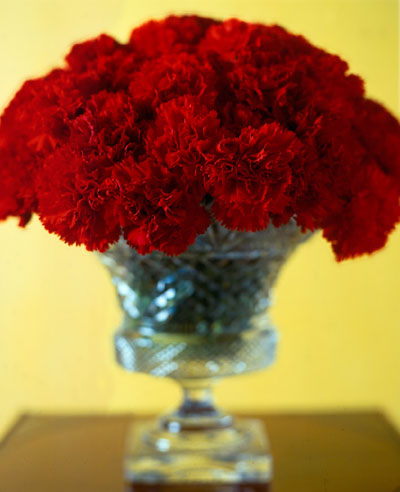 red carnation wedding centerpiece