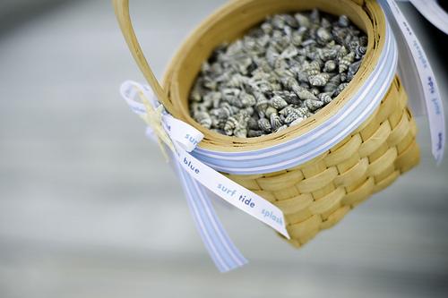 shells for beach wedding shells confetti