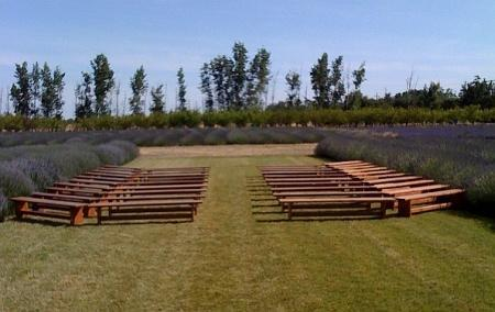 benches for ceremony