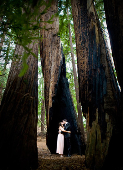 park in california wedding