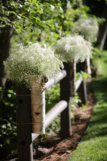 Baby's breath pew decorations