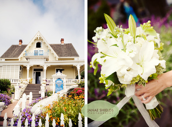 mendocino wedding
