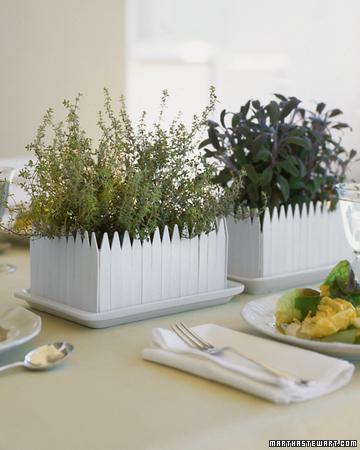 Edible Centerpieces are Eco Friendly