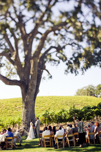 outdoor vineyard wedding ceremony
