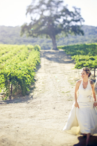 bride in california vineyard