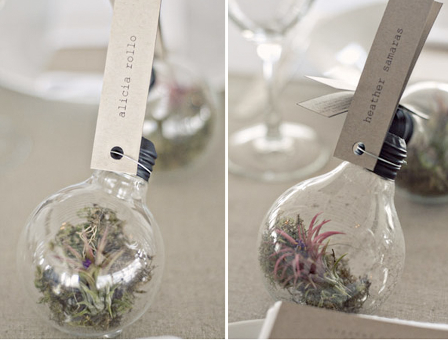 diy succulent ornament light bulb wedding favor