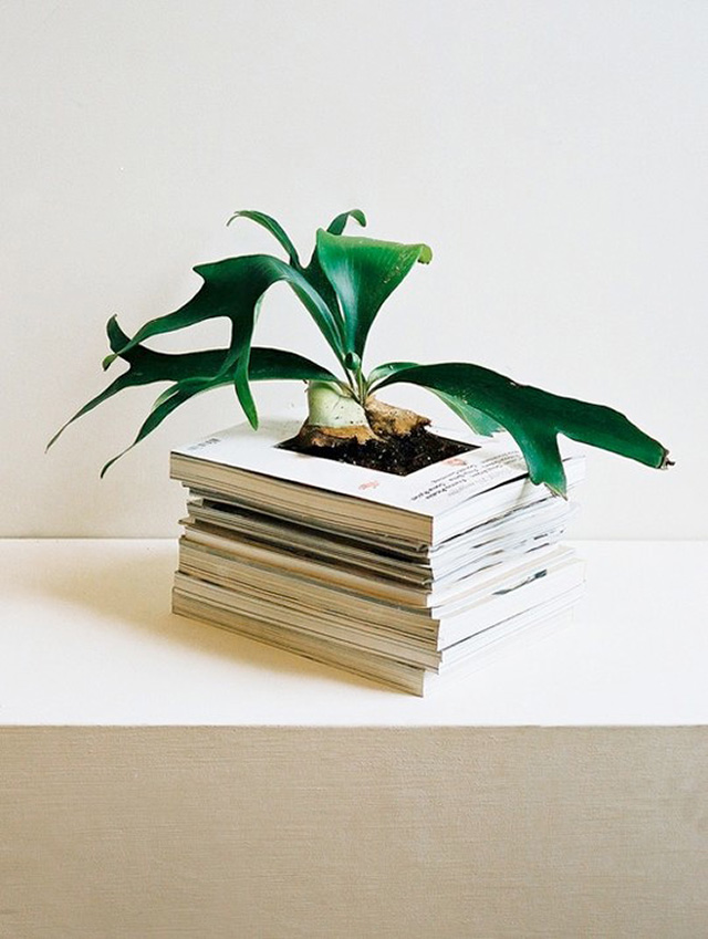 alternative planter in stack of books for wedding centerpiece
