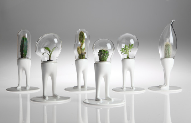 bubble planters for wedding decor on intimate weddings