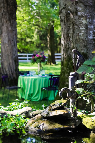Cedarwood outdoor wedding reception