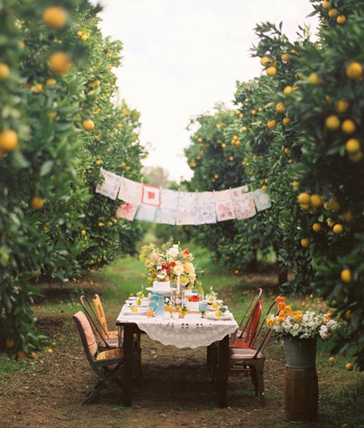orange-grove-wedding