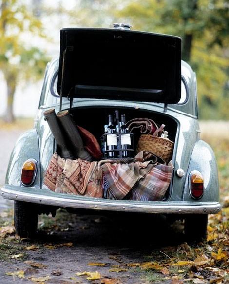 vw-picnic
