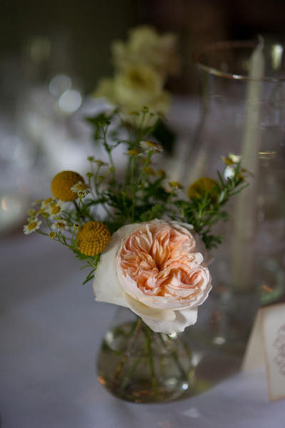 pink garden rose and billy button centerpiece