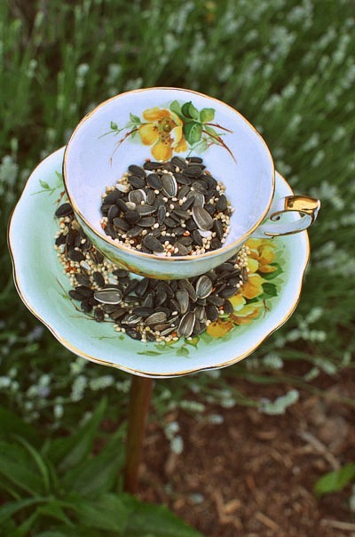 diy teacup birdfeeder