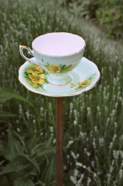 teacup birdfeeder