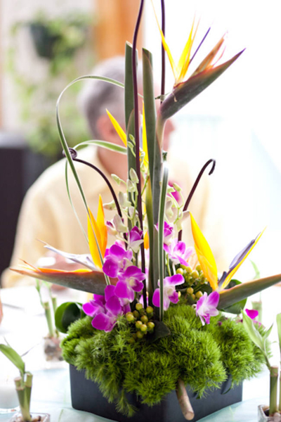 tropical flower centerpiece with orchids and birds of paradise
