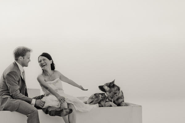 bride and groom sitting on roof with dog