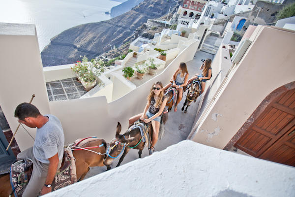 tourists riding on donkeys in Santorini