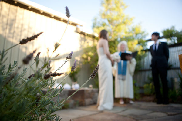 lavender plant at wedding ceremony