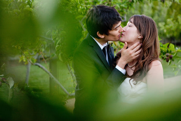 bride and groom kissing in apple orchard