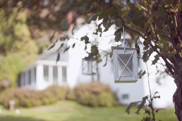 white lantern hanging in tree