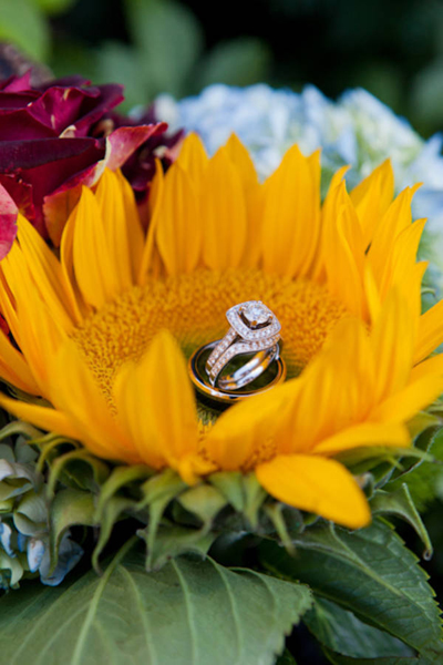 wedding rings in sunflower