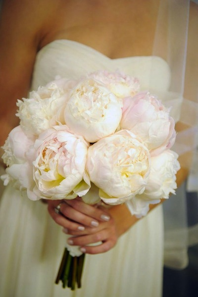 Image result for peony wedding flower