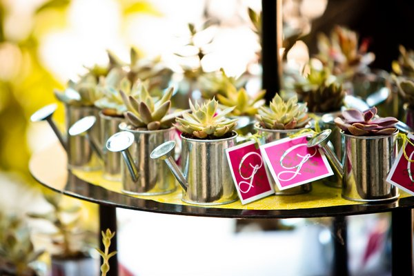 succulent in watering can wedding favors