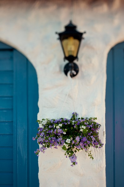 hanging basket of purple and white flowers