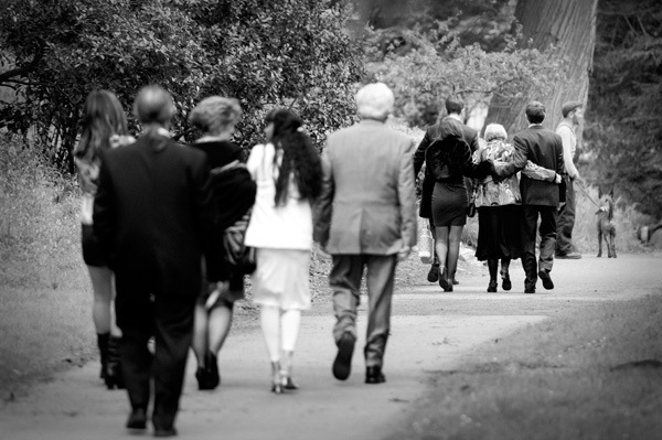 wedding guests walking through park