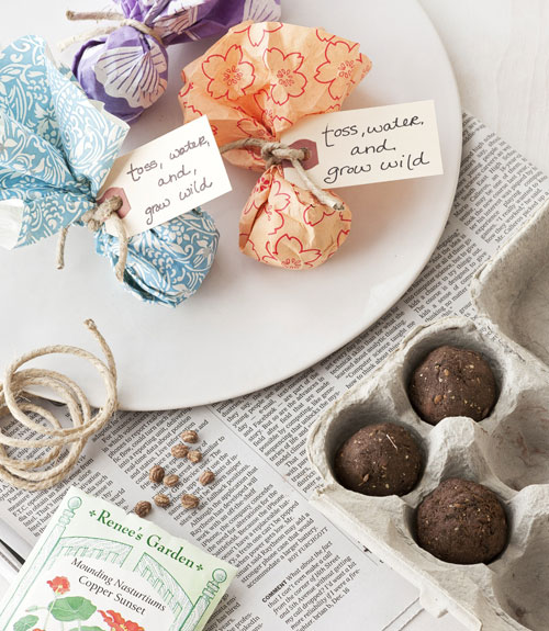 Diy Wedding Favors Seed Bombs