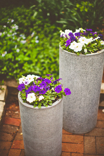 purple and white flowers on cylindrical cement planters