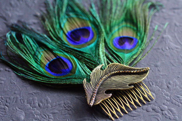 peacock hair fascinator