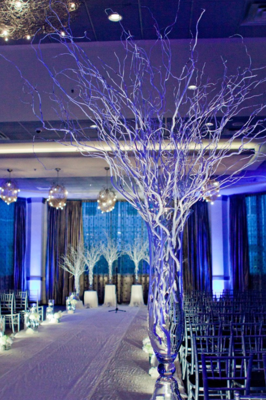 wedding-venues-chicago-belvedere-events-banquets