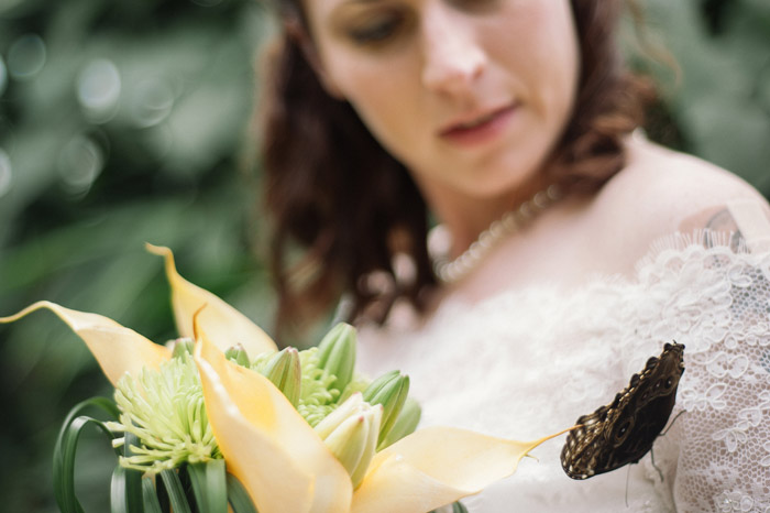 bride-with-butterfly-wedding-photography